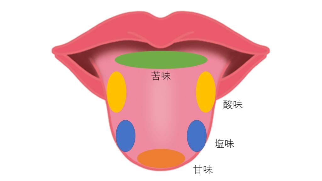味覚分布図(誤り)